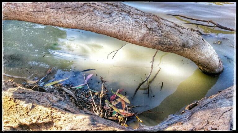 Fisherman's Creek