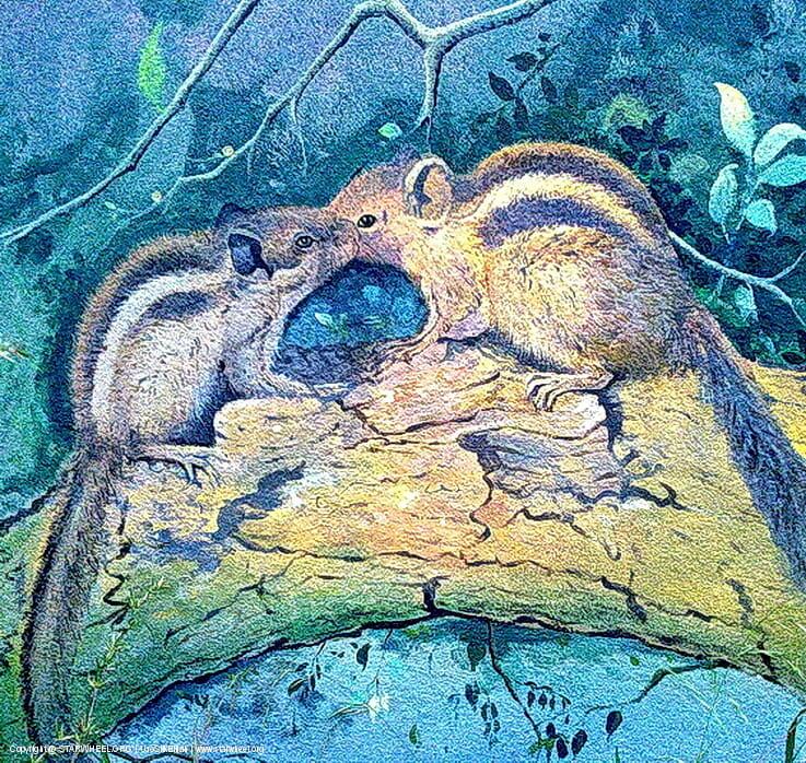 The Squirrels Walk